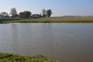 Plan rozwoju rolnictwa ekologicznego