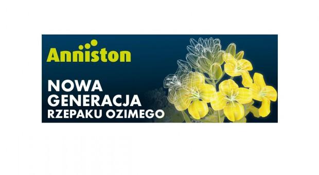 Anniston - nowa generacja rzepaku ozimego