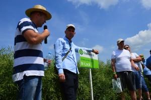 """""""Zielone pola"""" w Jakubowicach"""