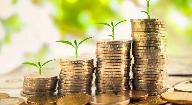 Dopłaty bezpośrednie po 2020 roku będą konstruowane podobnie jak obecnie