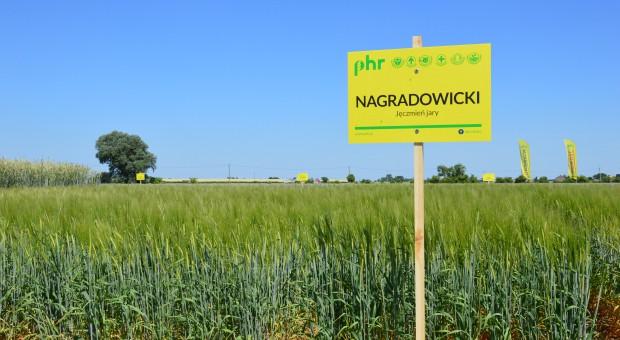 Dni Pola w Poznańskiej Hodowli Roślin w Nagradowicach