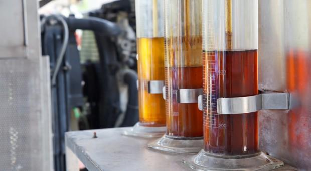 Francja: Protest przeciwko wykorzystywaniu oleju palmowego do produkcji biopaliw