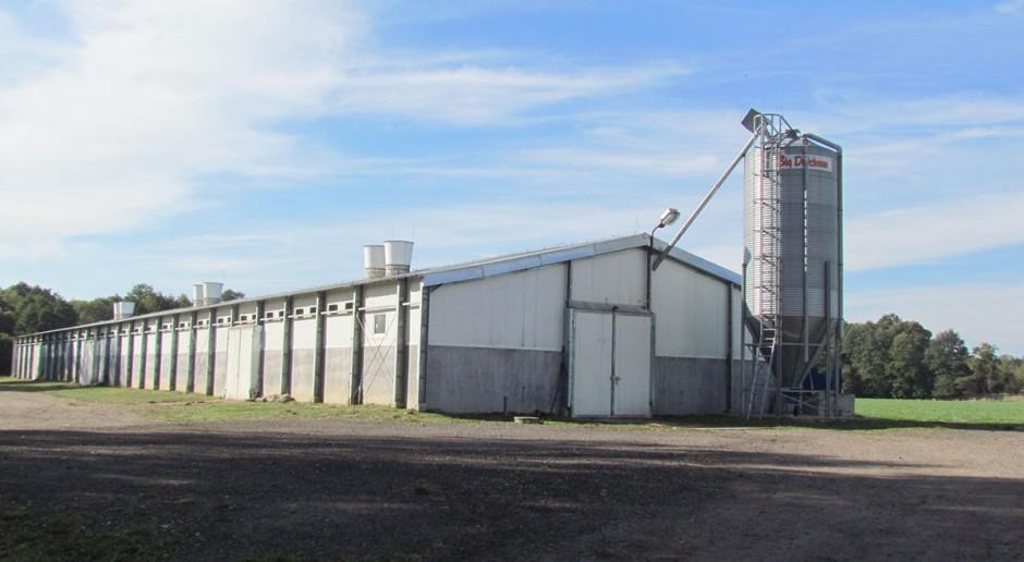 Fakty i mity o bioasekuracji