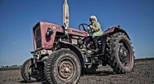 Rolniczka: Rolnictwo ekologiczne gwarantuje zdrowie, szczęście i pieniądze