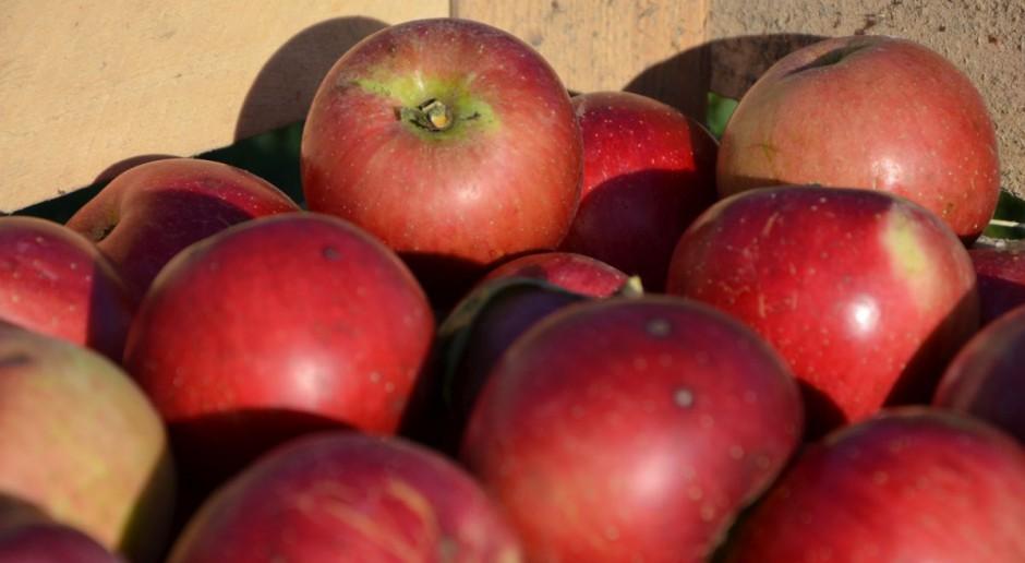 Metodyka badań do walki z podwójną jakością żywności