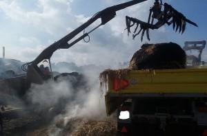 Strażacy wywozili ugaszone baloty na pole i tam ostatecznie dogaszali.