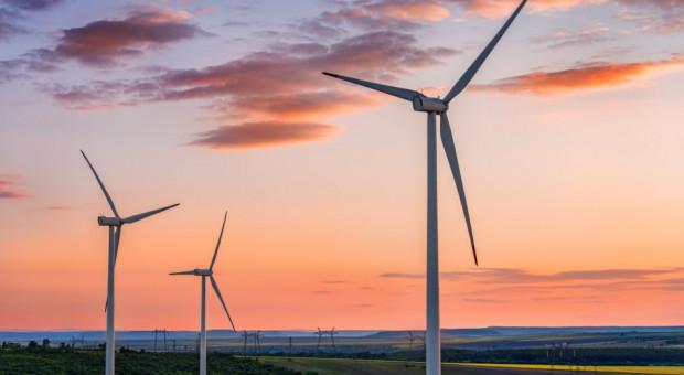 Copa i Cogeca o porozumieniu w sprawie energii odnawialnej po 2020 r.