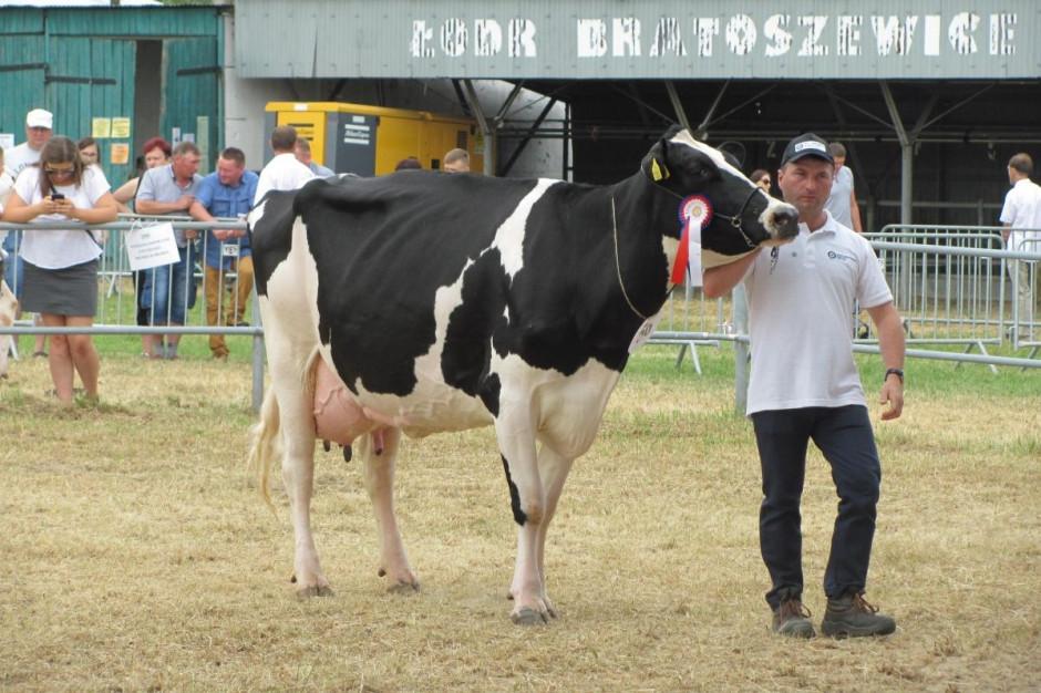 - Janette (wyhodowana w OHZ Dębołęka) – czempion w kategorii krów w trzeciej laktacji i starszych