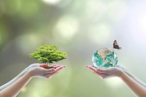 Rolnictwo ekologiczne pod nadzorem