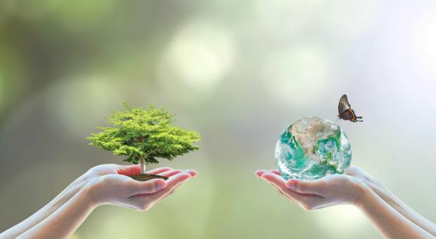 Woś: Europejski Zielony Ład powinien być wpisany w kontekst