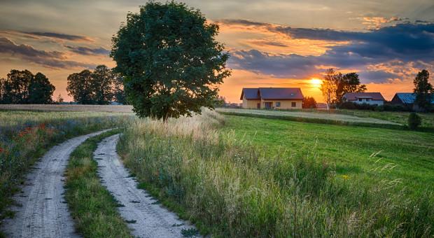 Raport: Systematycznie spada rozwojowa różnica między wsią a miastem