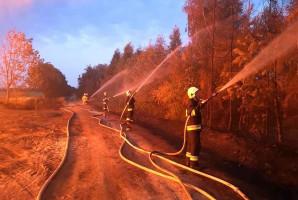 Strażakom udało się nie dopuścić do rozszerzenia pożaru na inne zabudowania