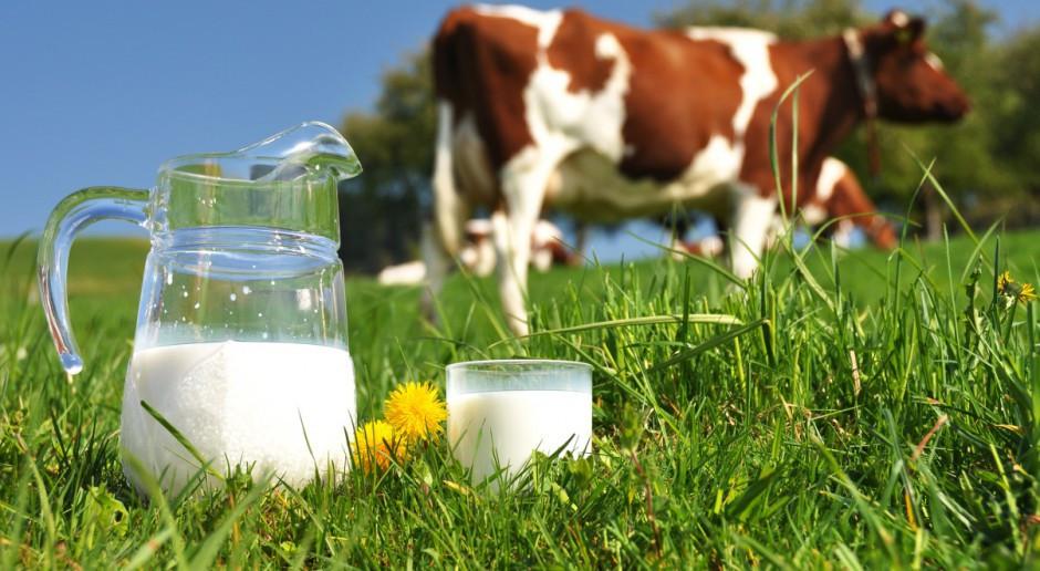 UE: Rynek mleka w 2017 r. i  w I połowie 2018 r.