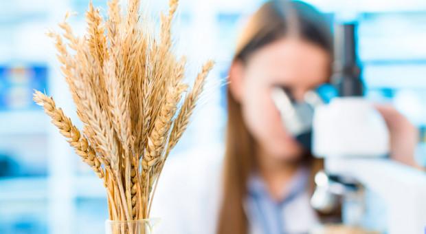 Kukiz'15 apeluje do ministra rolnictwa o skorzystanie z projektów ustaw dot. GMO i znakowania żywności