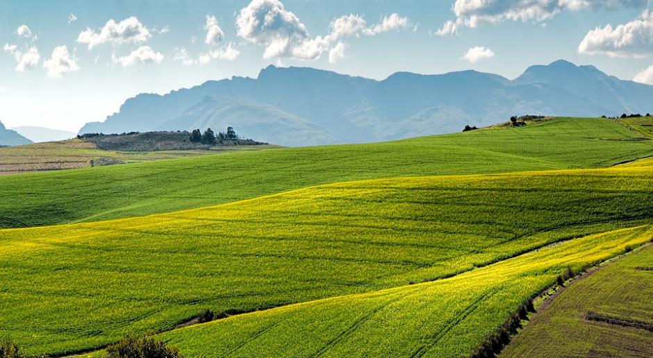W Polsce będzie rolnictwo oparte o GMO i komasację ziemi?