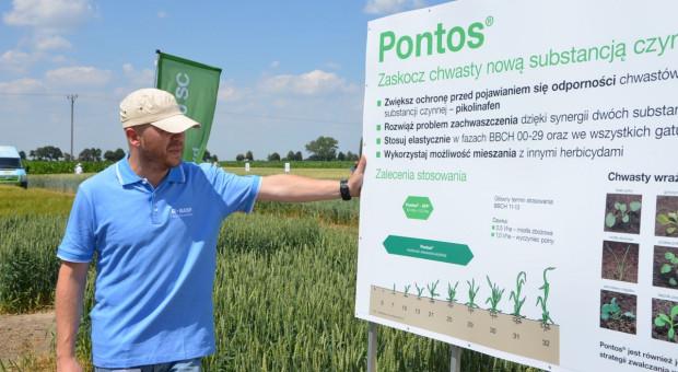 BASF pokazał nowy herbicyd z nową substancją czynną