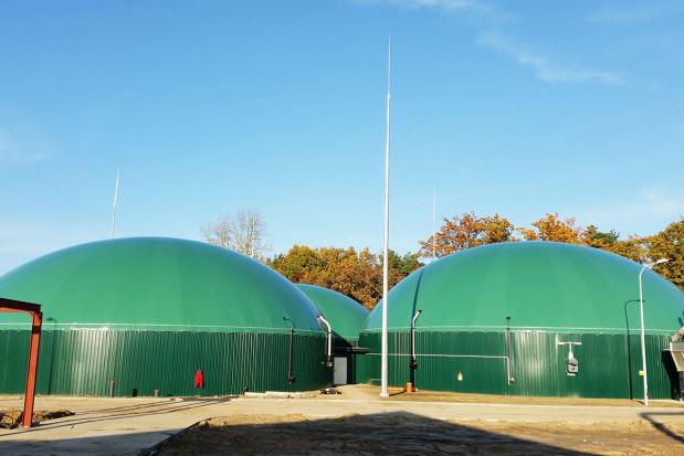 Biogaz receptą na odory?