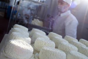 Chiny poprawią jakość produktów mlecznych