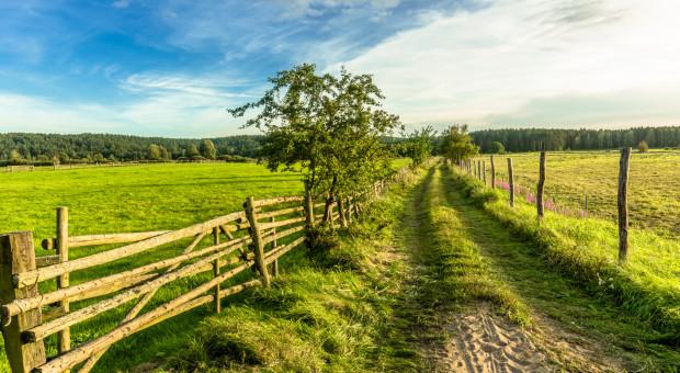 Rząd przyjął projekt nowelizacji ustawy o podatku rolnym