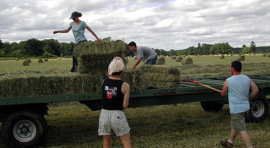 Rolników wkrótce zabraknie jak pielęgniarek