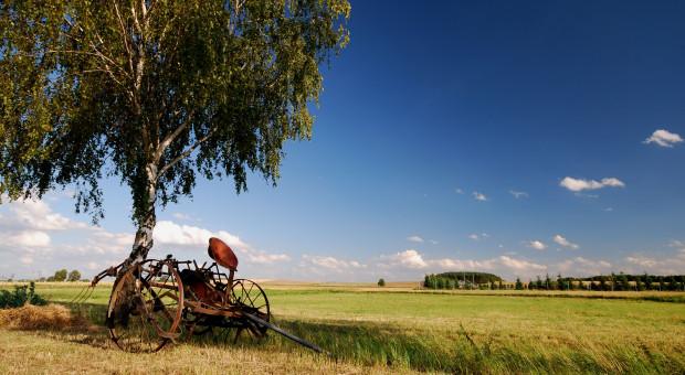"""""""Restrukturyzacja małych gospodarstw"""" raczej niechętnie?"""