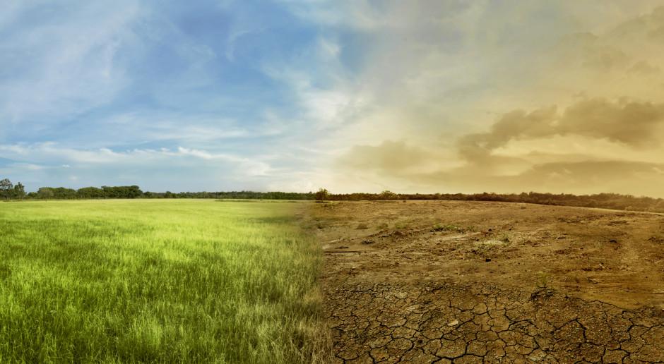 Ubezpieczenia od suszy wyparowały