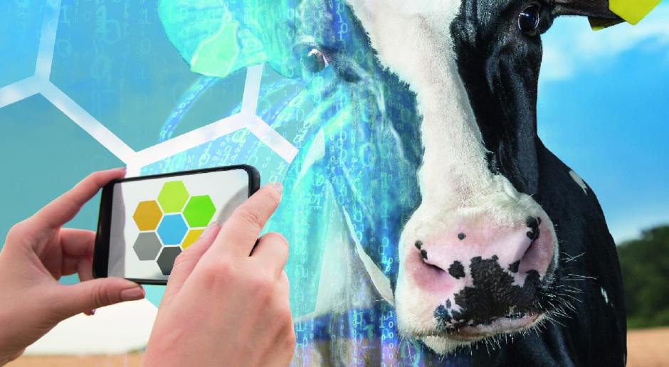 Funkcjonalny moduł zarządzający dla gospodarstw mleczarskich