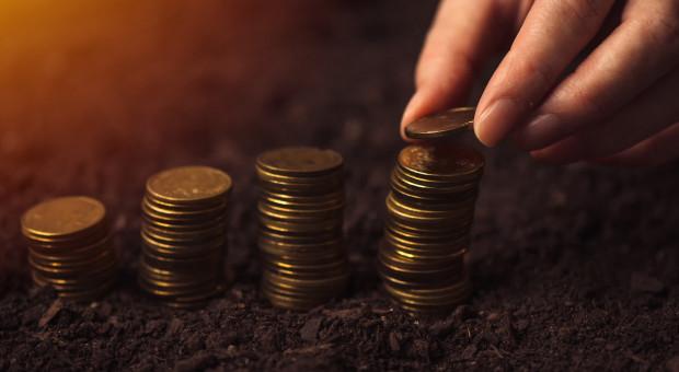 PSL chce Funduszu Wzajemnej Pomocy w Stabilizacji Dochodów Rolniczych