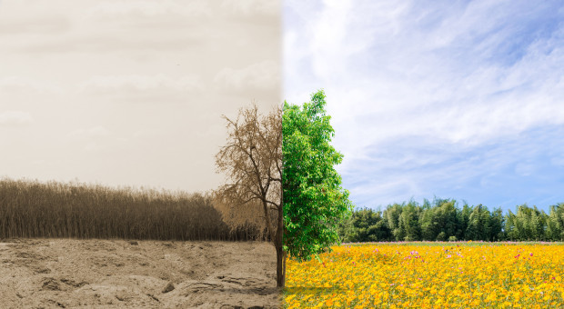 Susza a programy rolnośrodowiskowe