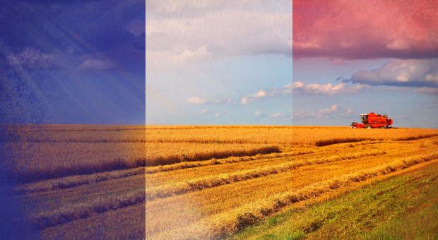 Francuscy rolnicy przeciwni redukcji budżetu WPR