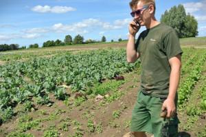 Rolnictwo ekologiczne w Niemczech nadal rośnie