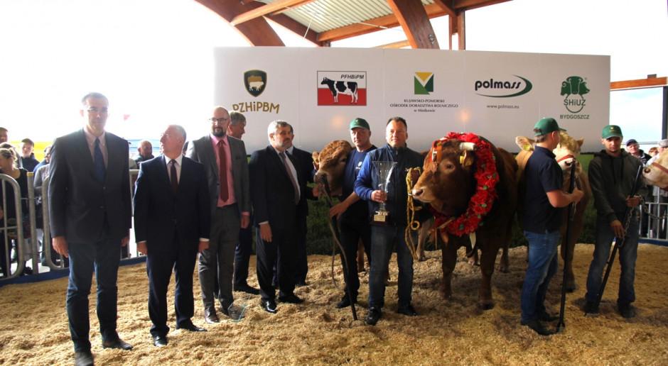 Święto hodowców bydła mięsnego w Minikowie