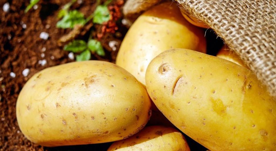 Ziemniak będzie miał informację o pochodzeniu