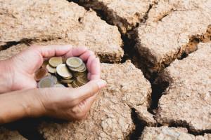 MRiRW: Dopłata do ha przysługuje rolnikom, których szkody wynoszą powyżej 30 proc.