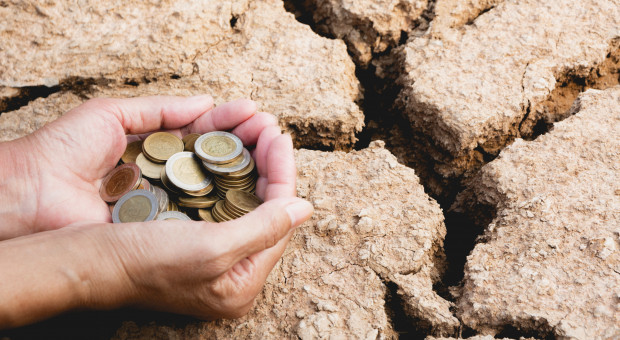 Kredyt Banku BGŻ BNP Paribas dla dotkniętych suszą