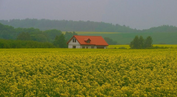 Łatwiej będzie uzyskać pomoc z PROW za przekazanie małego gospodarstwa