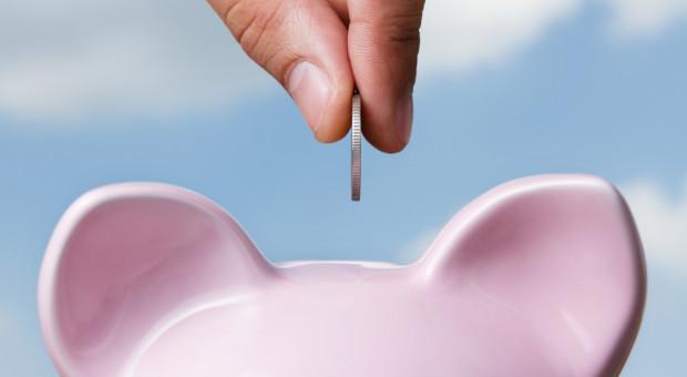 Pomoc dla producentów świń, którym zagraża utrata płynności finansowej w związku z COVID-19