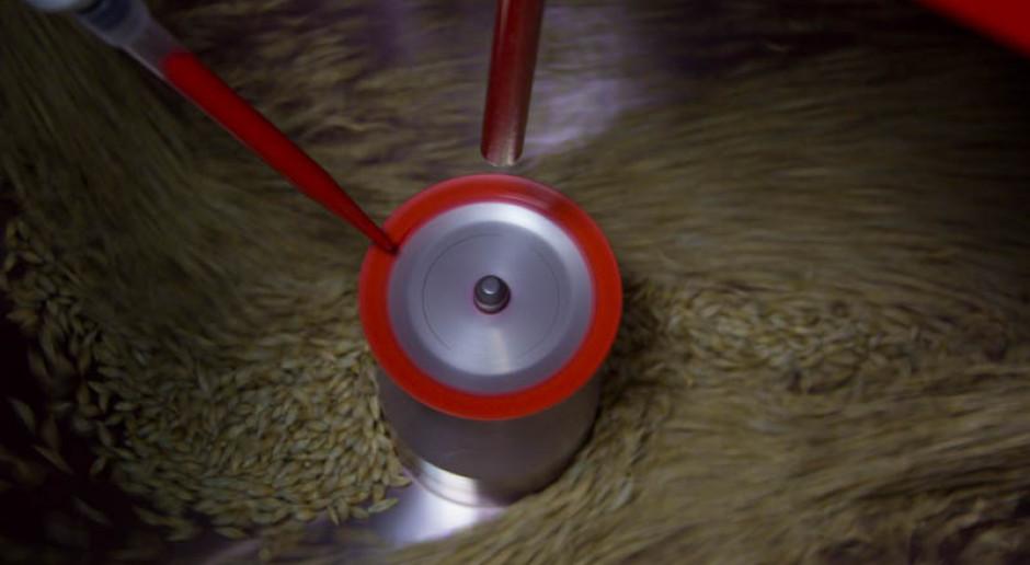 Wybór zaprawy nasiennej ma znaczenie...