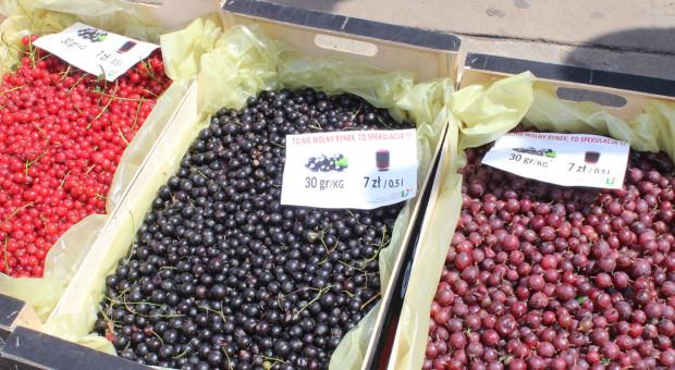 Poseł Sachajko: Chcemy równego traktowania polskich rolników na unijnym rynku