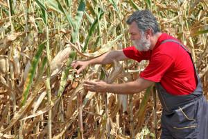 Kosiniak-Kamysz: Żądamy od rządu zwiększenia wsparcia dla rolników