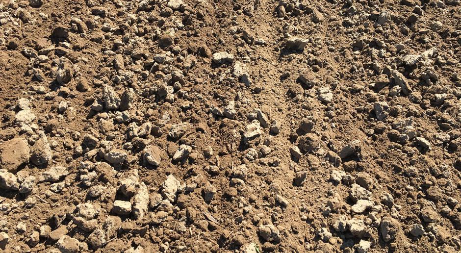 Wartość gleby w odniesieniu do upraw