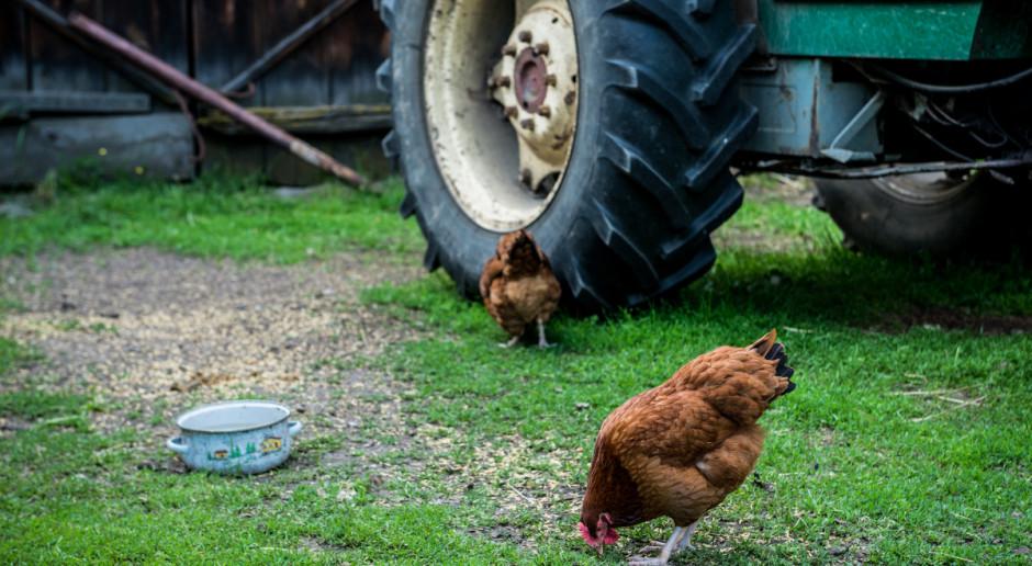 ARiMR: Więcej pieniędzy na projekty związane z modernizacją gospodarstw