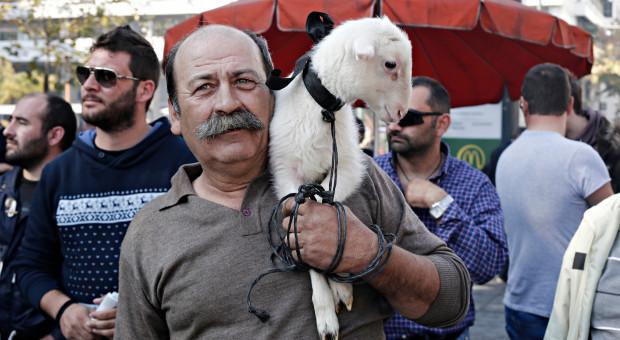 Bułgarscy rolnicy protestują przeciwko masowemu ubojowi kóz i owiec