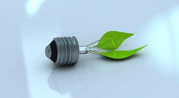 Programy zrównoważonego rozwoju w Banku BGŻ BNP Paribas
