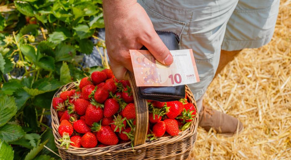 Posłowie PSL obawiają się o dopłaty bezpośrednie i dochody sadowników