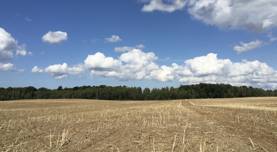 Wpływ glifosatu na jakość gleby