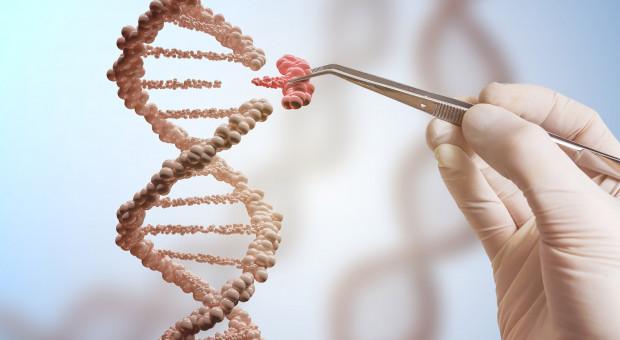 Edycja genów to GMO