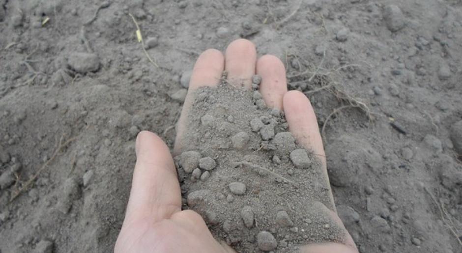 Krajowe badania gleb – anonimowo i bezpłatnie