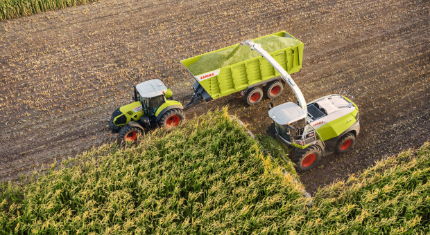 Razem dla rekordu Polski - zbiór kukurydzy