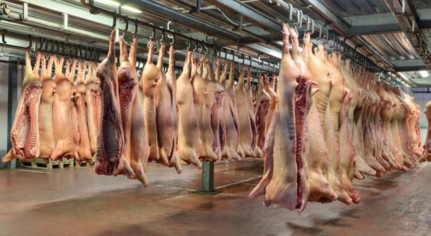 Niemcy: Pomoc dla hodowców zwierząt gospodarskich